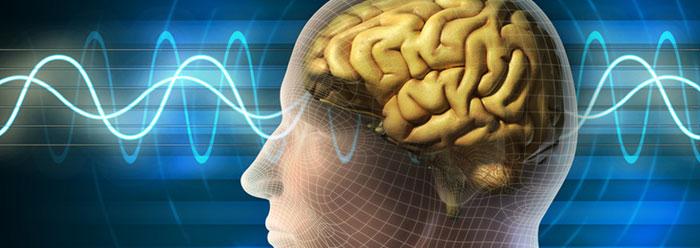 5-24-12-icr-human_brain_genes_wide